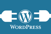 WORDPRESS - instalace, hosting, doména